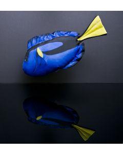 Gaby Pudefisk Paletkirugfisk / Dory mini - 30cm